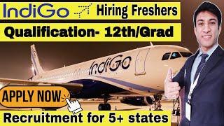 Indigo Ground staff New jobs 🚨 | Indigo Airline Jobs  | Airport Jobs | Airline jobs |