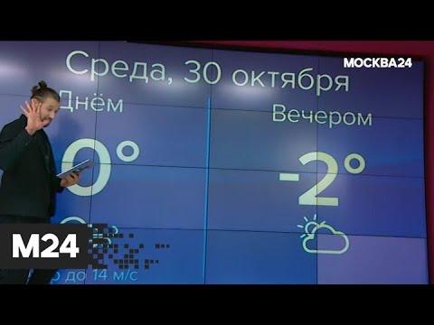 """""""Погода"""": какая погода ожидает москвичей в конце октября - Москва 24"""