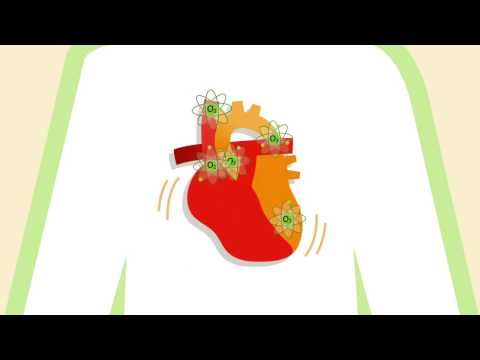 How Exercise Improves Heart Health – Healthfirst Healthy Living