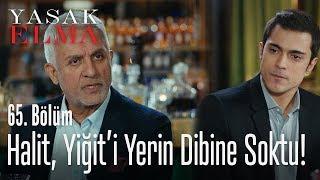 Halit, Yiğit'i yerin dibine soktu - Yasak Elma 65. Bölüm
