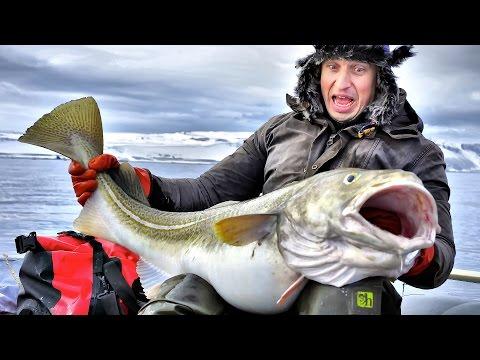 морская рыбалка на баренцевом море цены
