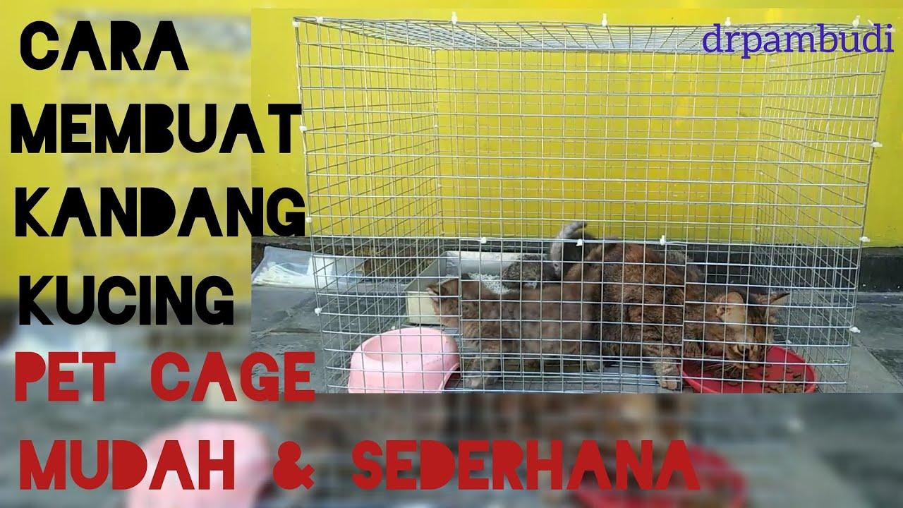 Cara membuat kandang kucing mudah dan sederhana, pet cage ...
