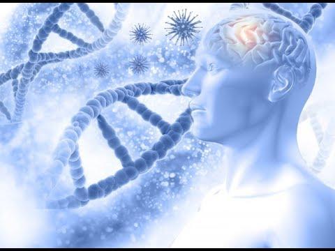 Productor y Exportador de Inteligencia:  Ministerio de Ciencia y Tecnología