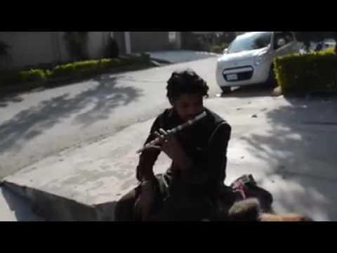Tajdar-e-Haram Qawali Naye Andaz Main