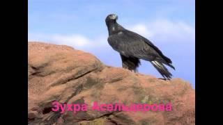 КУМЫКСКИЕ СВАДЕБНЫЕ ПЕСНИ-ЗУХРА АСЕЛЬДЕРОВА
