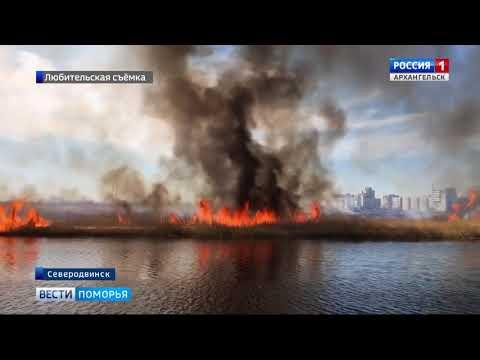 В Няндомском районе субботник во дворе обернулся пожаром