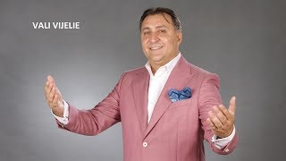 VALI VIJELIE si ANA MARIA GOGA - Dragostea mea nemuritoare (AUDIO OFICIAL 2014)