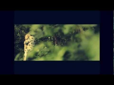 Клип Jandro - Любовь - мечта