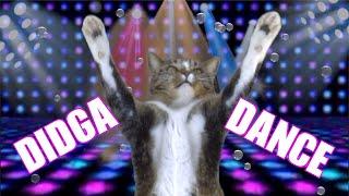 THE DIDGA DANCE
