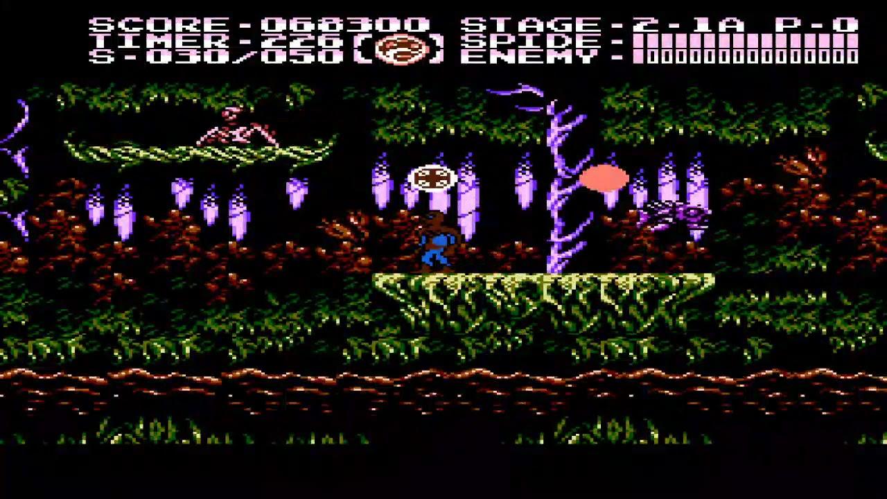 The Game Genie Player Spiderman 2 Nes Ninja Gaiden 3 Hack