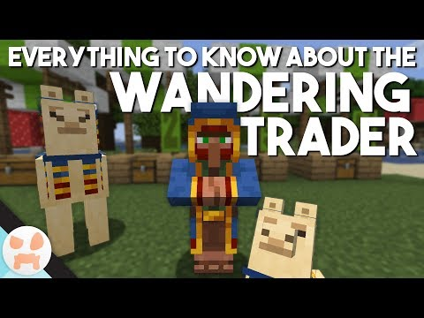 everything-to-know-about-the-wandering-trader!