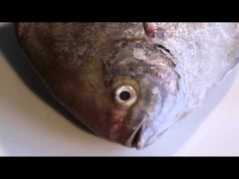 Did You Know...? คุณรู้หรือไม่ วิธีขจัดกลิ่นคาวปลา