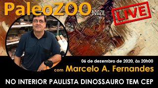PALEOZOOBR LIVE: NO INTERIOR PAULISTA DINOSSAURO TEM CEP