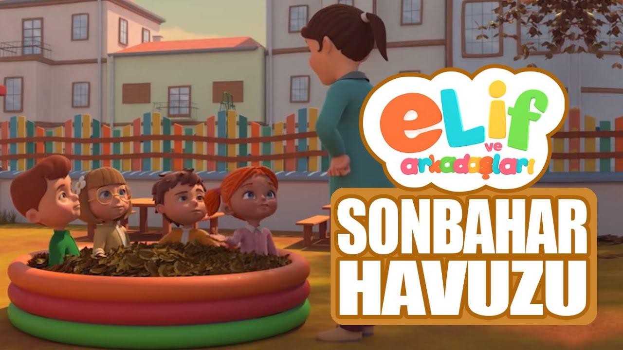 Elif ve Arkadaşları  - Sonbahar Havuzu - TRT Çocuk Çizgi Film