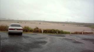 Hawaii-raining Cats And Dogs In The Shrimp Farm [english Sub]