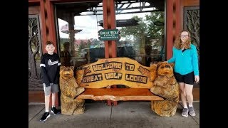 GREAT WOLF LODGE Wisconsin Dells Resort Tour