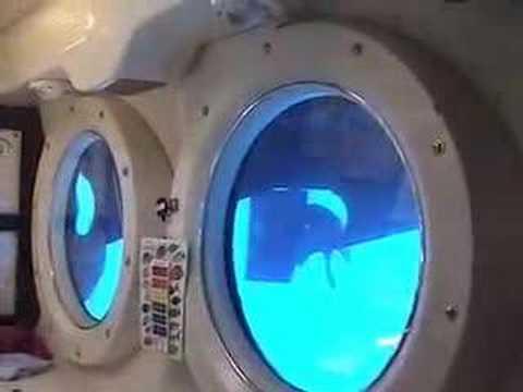 Atlantis IV Submarine Lahaina Maui Hawaii Short Trip