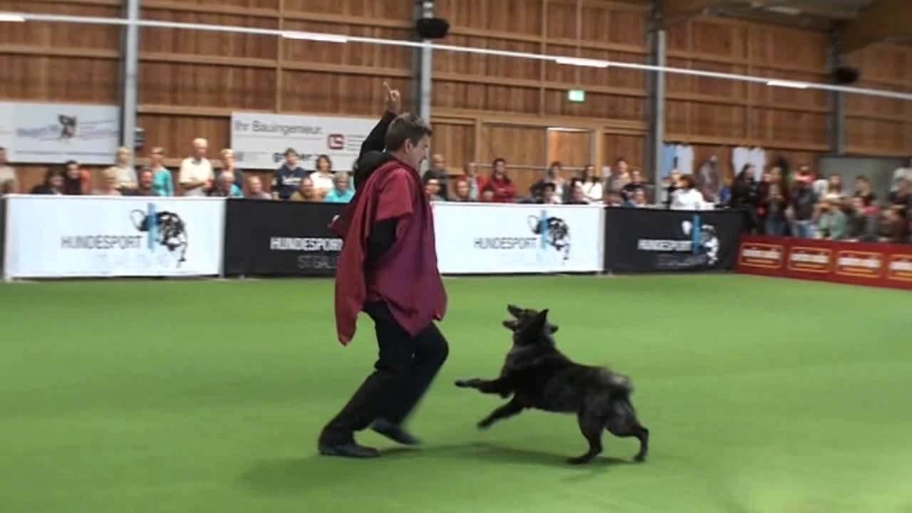 Temporecrea Dog Dancing