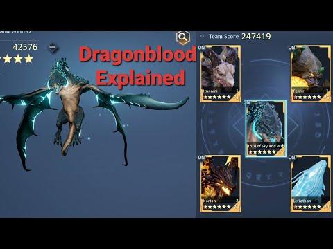 Dragonblood Guide| Dragon Raja |