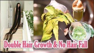 Homemade Hair Oil for Double Hair Growth & No Hair Fall