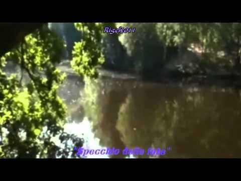 La magia della Foresta di Brocéliande - The magic of the Brocéliande Forest