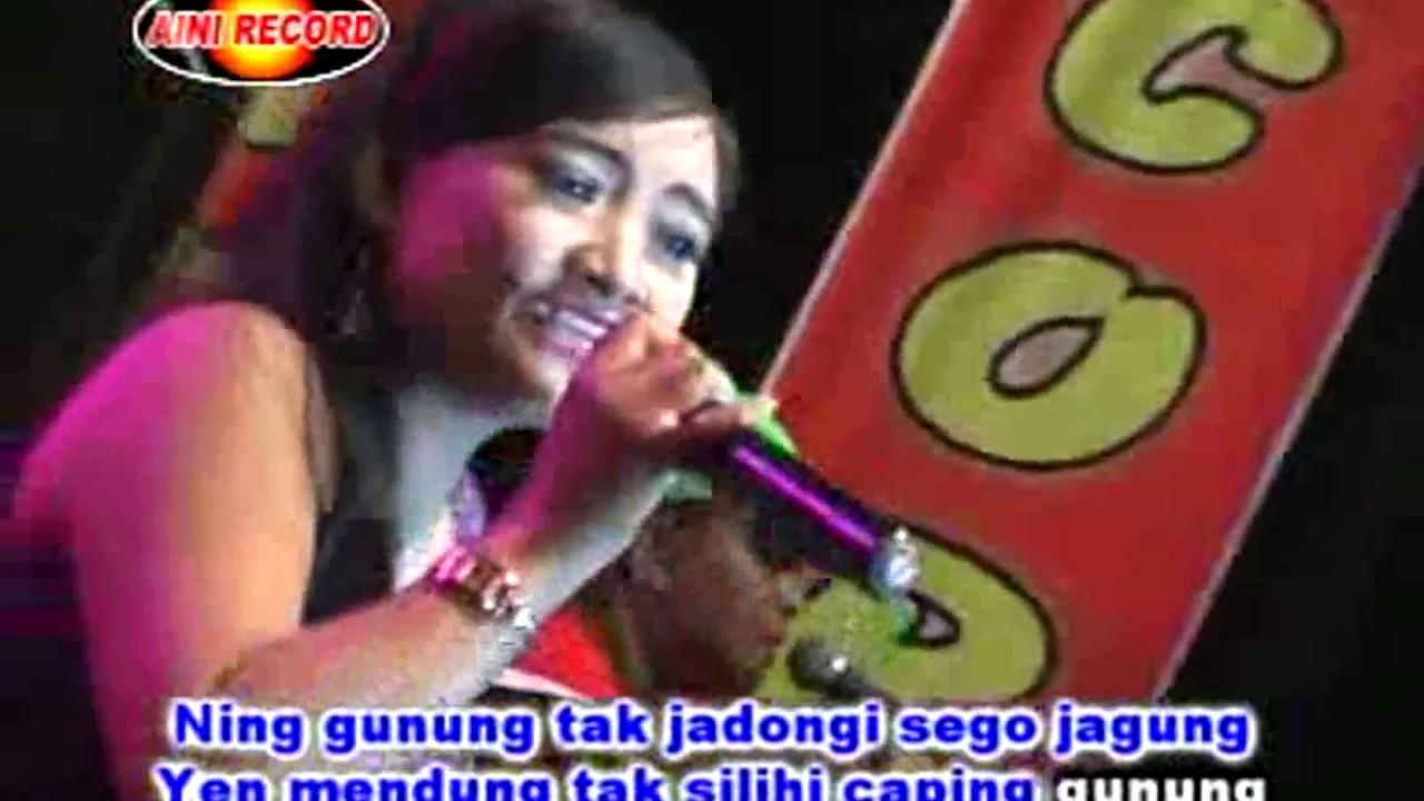 Download Jambu Alas Rena Kdi Sodiq Monata Mp3 - SongsBizz