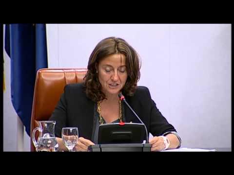 Primera intervenció Mercè Conesa com presidenta de la Diputació de Barcelona