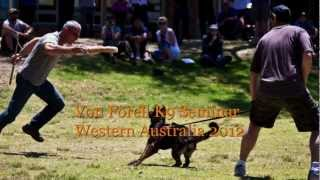 Von Forell K9 Training Seminar, Perth