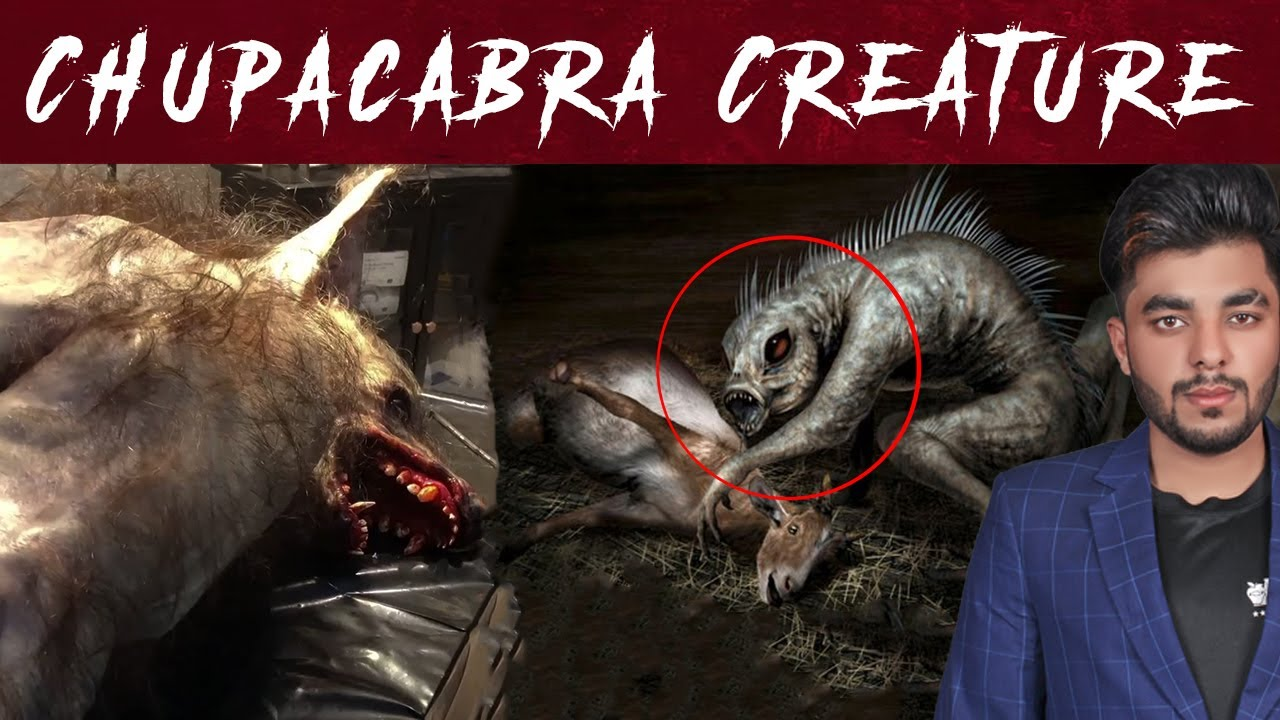 Download Chupacabra Creature Found in Sialkot Pakistan   WOH KYA HOGA    GHOST HUNTING PARANORMAL SHOW