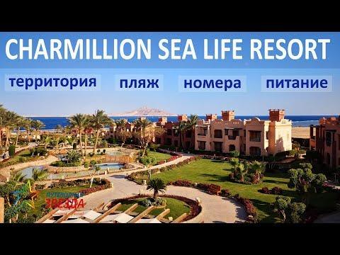 CHARMILLION SEA LIFE 4* (обзор 2019 года). Территория, пляж, номера, питание.