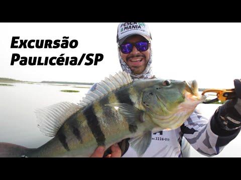 Excursão Pesca & Mania em Paulicéia/SP