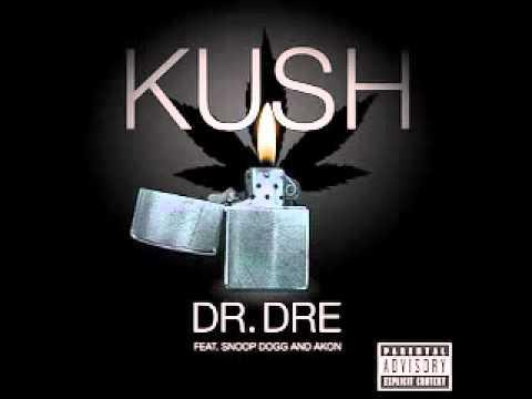 **NEW 2011** Kush (Remix) [Feat. Eminem, Snoop Dogg, and Akon]