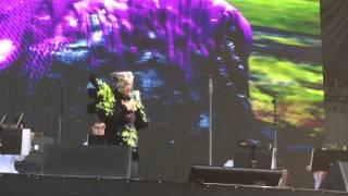 Björk - Family - GovBall NYC 2015 - (3/13) - 1080p