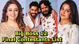 BIG BOSS 12 -  Confirmed Contestants List 2018