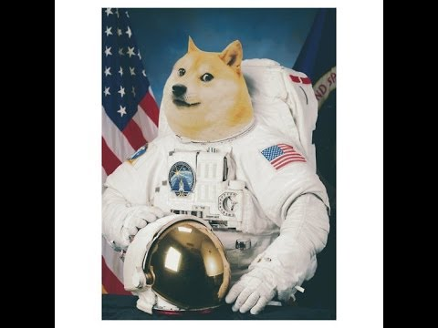 14011 doge in space - photo #36