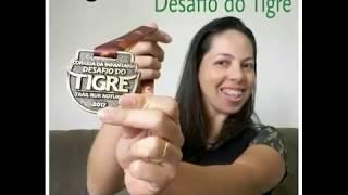 VlogRun - Desafio do Tigre