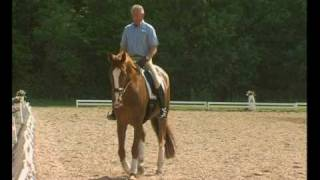 Klaus Balkenhol - from foal to Grand Prix horse. Part 3: Creating a Grand Prix Horse