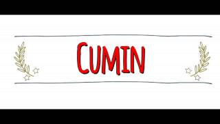 American vs Australian Accent: How to Pronounce CUMIN in an Australian or American Accent