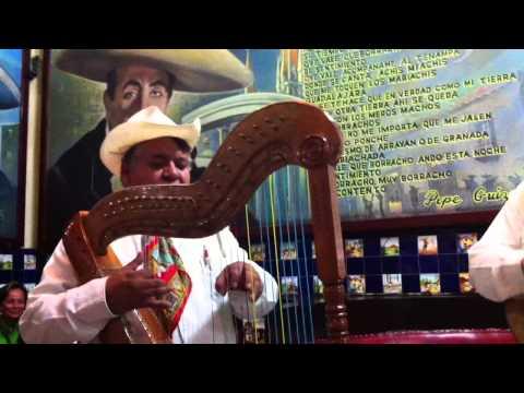 Guillermo Castaneda Music of Jarochos, Veracruz Mexico