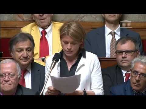 Isabelle Le Callennec - Violences à Rennes