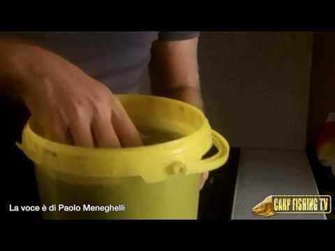 CARPFISHING: Come Preparare I Semi Di Canapa Per La Pesca Alle Carpe
