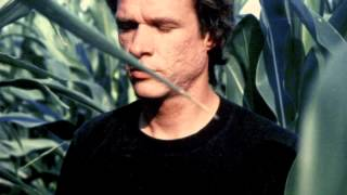 Watch Arthur Russell A Sudden Chill video