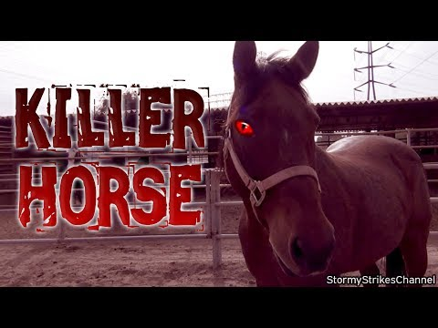 KILLER HORSE – Horror Movie Trailer Parody / Satire / Spoof