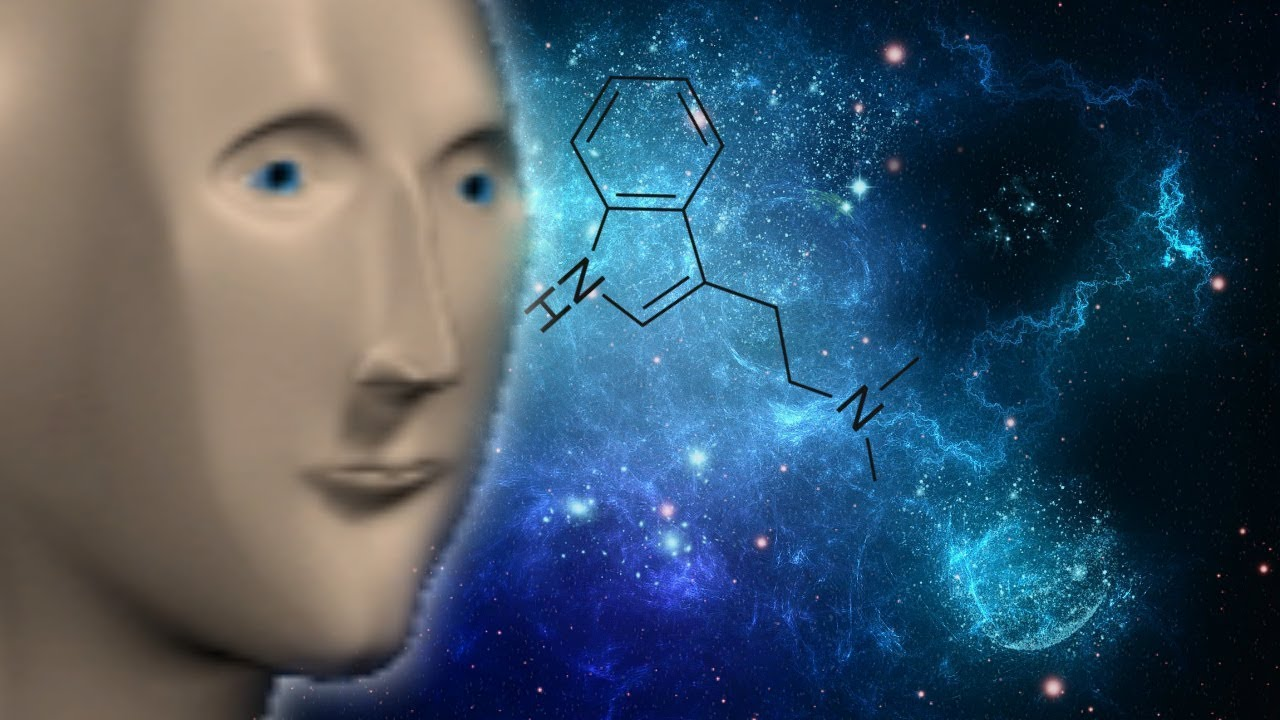 meme surreal dmt takes