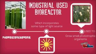 Introduction of Bioreactor