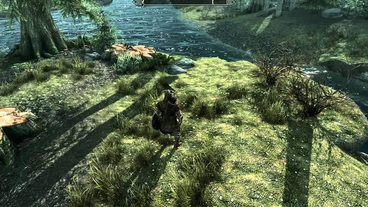 The Elder Scrolls V: Skyrim - NVIDIA Ambient Occlusion