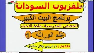 الأحياء   الوارثة (1)   د. إدريس جلال