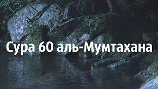 Ахьмад Гулиев Сура 60: Аль-Мумтахана (Испытуемая)