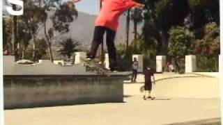 Moose & Friends:Santa Barbara Skate Park