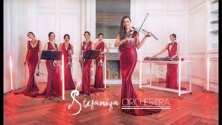 Beethoven - Ode To Joy (Stefaniya Violin Orchestra & DJ Remix)